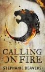 Calling - Ebook