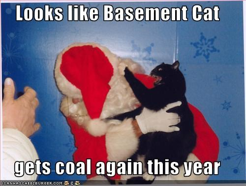 Basement cat gets coal for Christmas