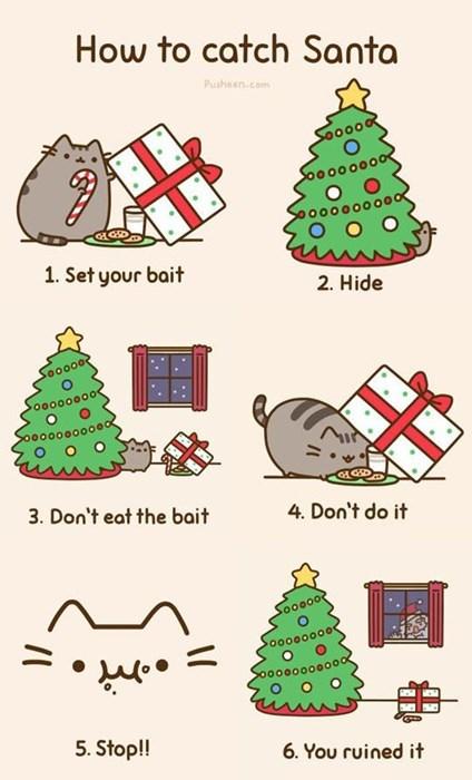 cat trapping Santa