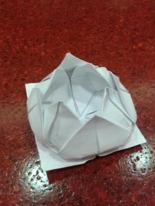 origami flower lotus