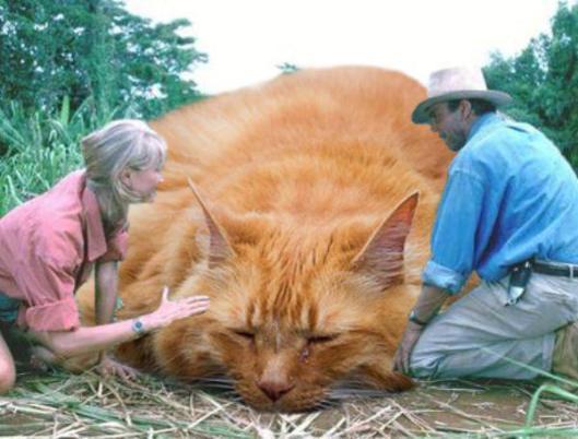 jurassic park world cats photoshop