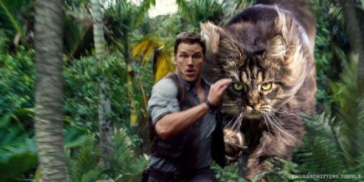 cat chase jurassic park world