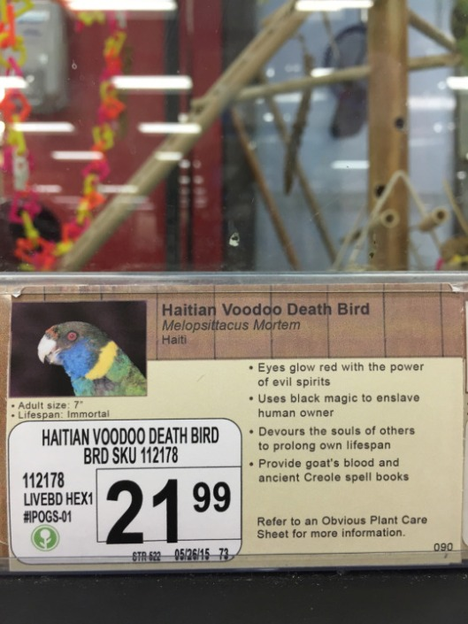 pet store captions customer