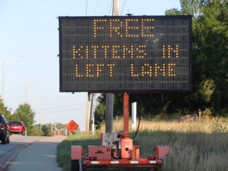 Hacked traffic sign kittens