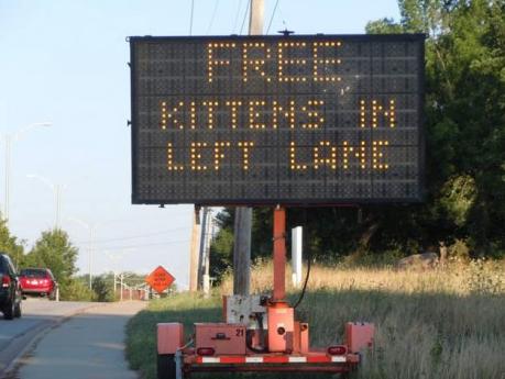 Hacked traffic sign kittens