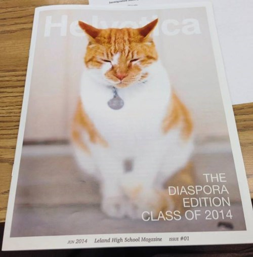 kitty makes school magazine and yearbook