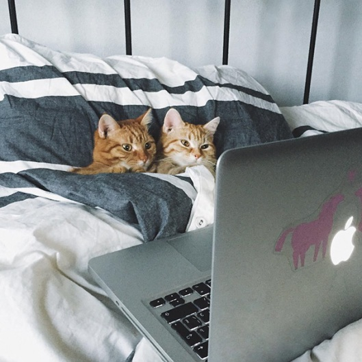 Movie date kitty couple