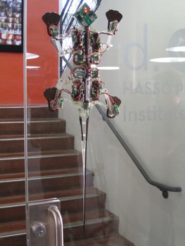 gecko robot