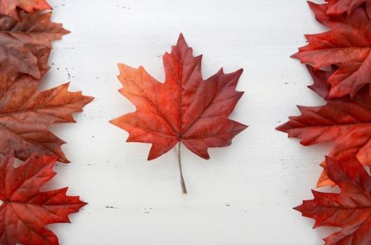 maple leaf flag