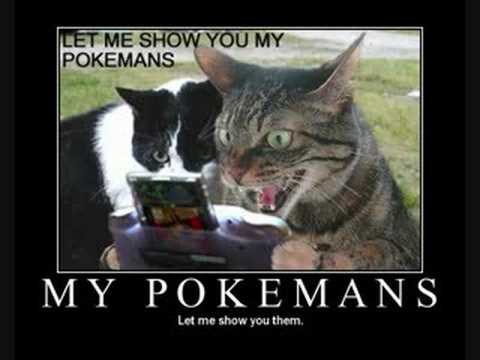 My Pokemons let me show you them