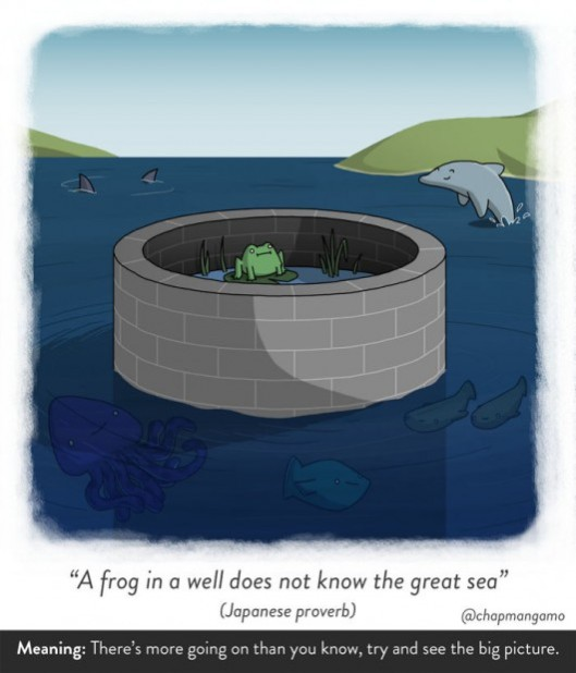 A frog in a well does not know the great sea. Japanese proverb. There's more going on than you know, try and see the big picture.