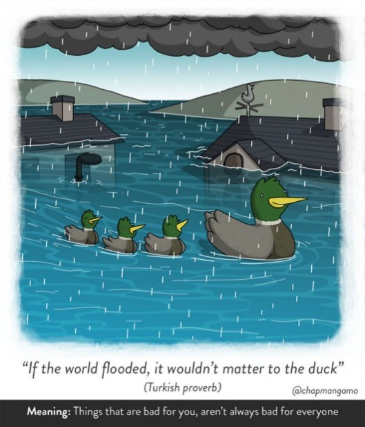 If the world flooded, it wouldn't matter to the duck. Turkish proverb. Things that are bad for you, aren't always bad for everyone.