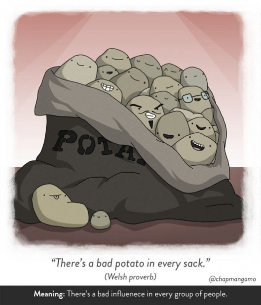 There's a bad potato in every sack. Welsh proverb. There's a bad influence in every group of people.