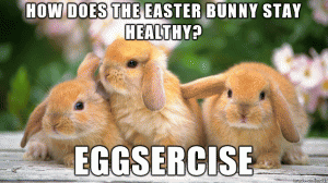 eggsercise bunny puns