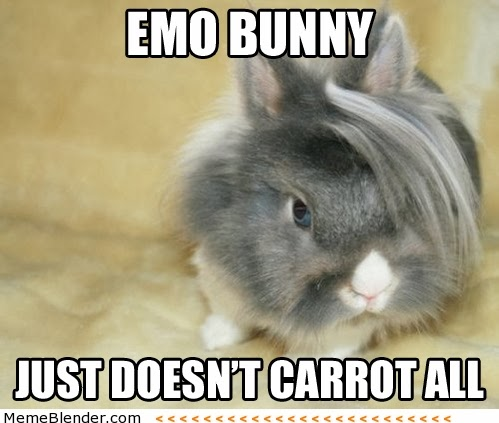emo bunny doesn't carrot all
